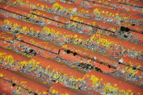 Midlothian Roof Repair